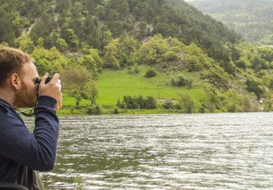 Stok Fotoğrafçılığında Hangi Fotoğraflar Çok Satar? (Kendi Deneyimlerim)